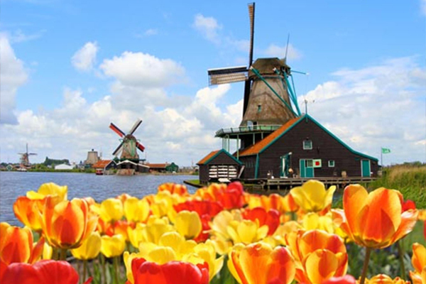 Taxi Amsterdam Schiphol Minibus Bus rent Vip private driver shuttle service congress event group transfer buscompany private tours Tour Netherlands Holland Keukenhof Zaanse Schans Volendam Giethoorn